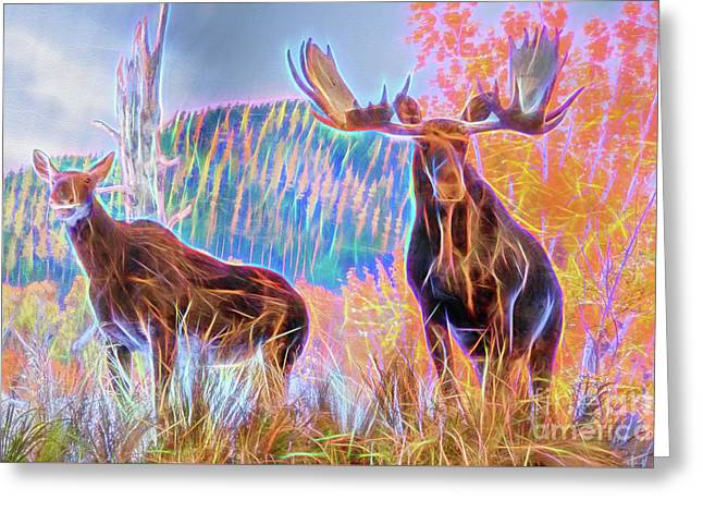 Greeting Card featuring the photograph Pastel Moose Couple by Ray Shiu