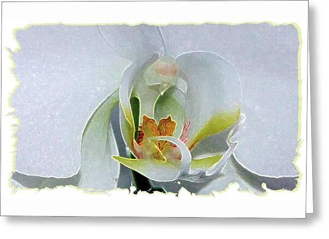 Greeting Card featuring the digital art Pastel Orchid by Ellen Barron O'Reilly