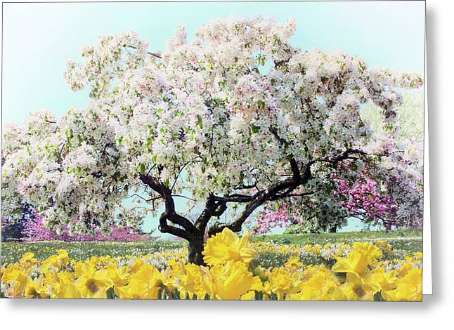 Pastel Park Greeting Card by Jessica Jenney