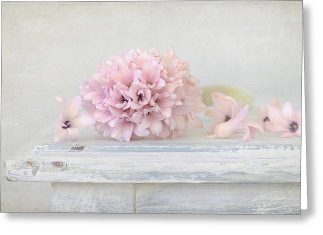 Pastel Pink Hyacinth Greeting Card