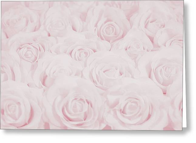 Pastel Pink Roses Greeting Card by Lucid Mood