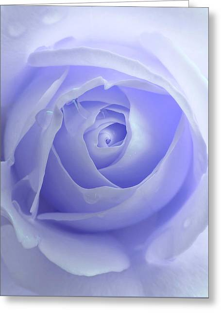 Pastel Purple Rose Flower Greeting Card by Jennie Marie Schell