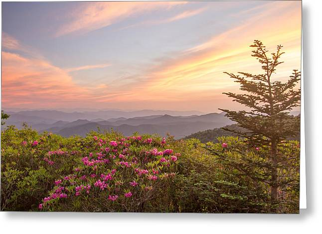 Pastel Sky Greeting Card by Doug McPherson