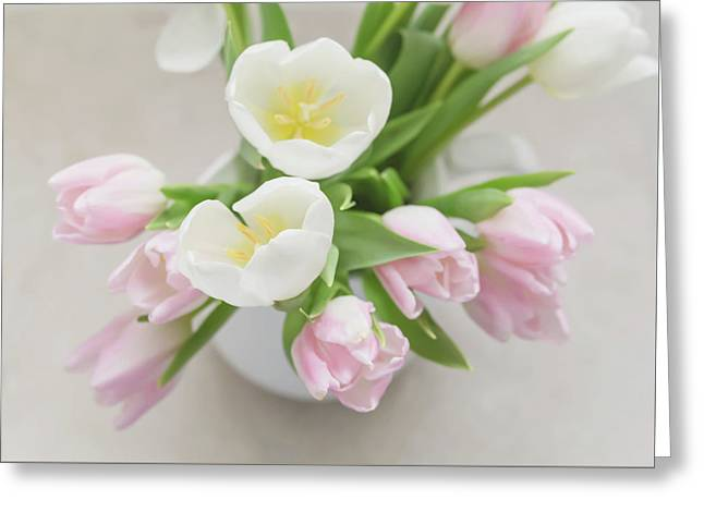 Greeting Card featuring the photograph Pastel Tulips by Kim Hojnacki