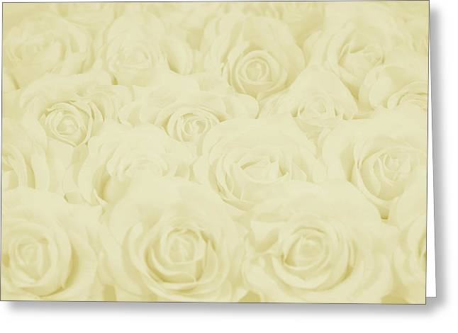 Pastel Yellow Roses Greeting Card by Lucid Mood