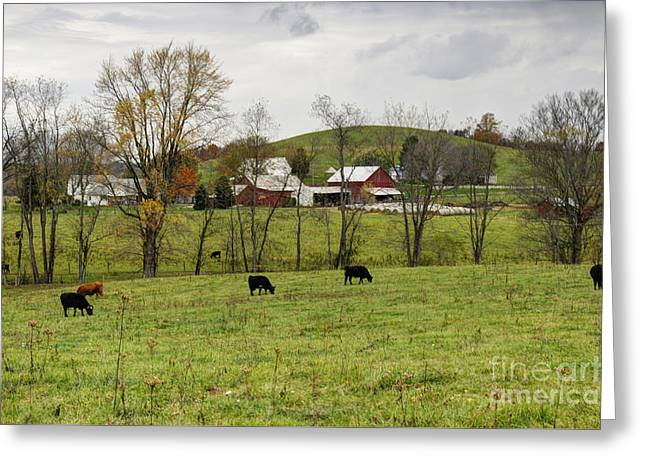 Greeting Card featuring the photograph Pastoral by Larry Ricker