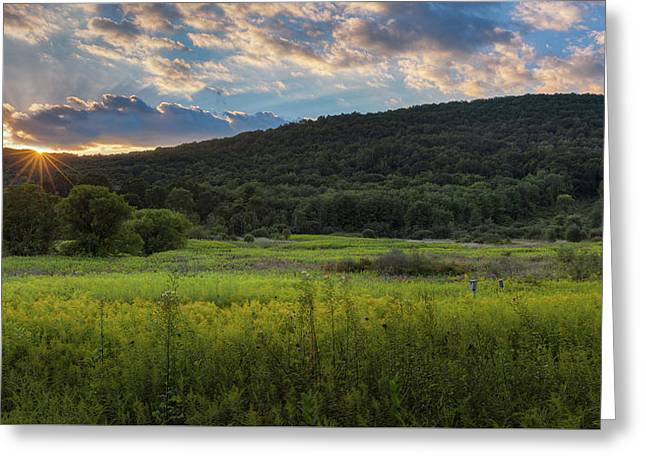 Pastoral Sunset 2016 Greeting Card by Bill Wakeley