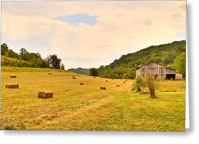 Pastorial Framland In Kentucky Greeting Card by Douglas Barnett