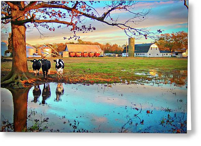 Pasture At Bacon's Castle Greeting Card