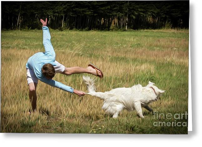 Pasture Ballet Human Interest Art By Kaylyn Franks   Greeting Card