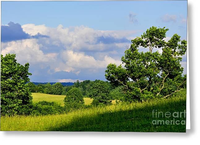 Pasture Fields And Mountains Greeting Card by Thomas R Fletcher