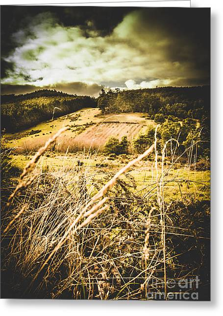 Pasture Of Darkness Greeting Card by Jorgo Photography - Wall Art Gallery