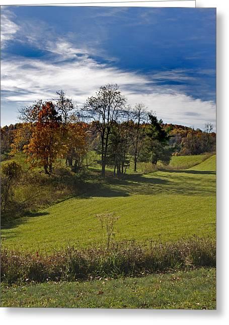 Pastures N Fields Greeting Card