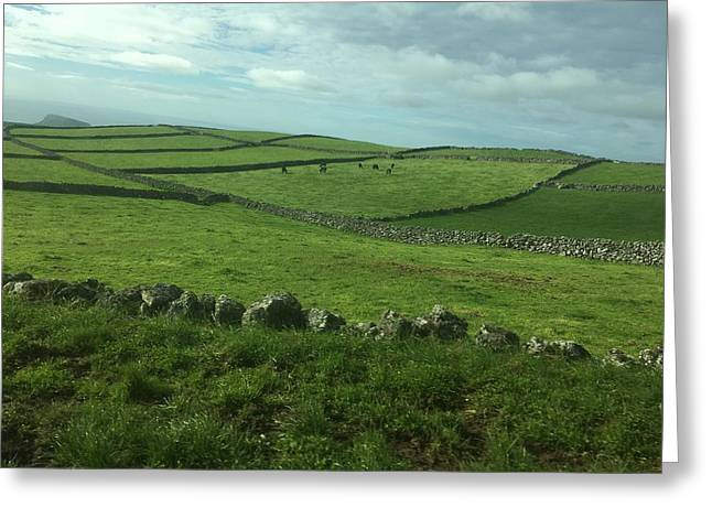 Pastures Of Terceira, The Azores, Portugal Greeting Card