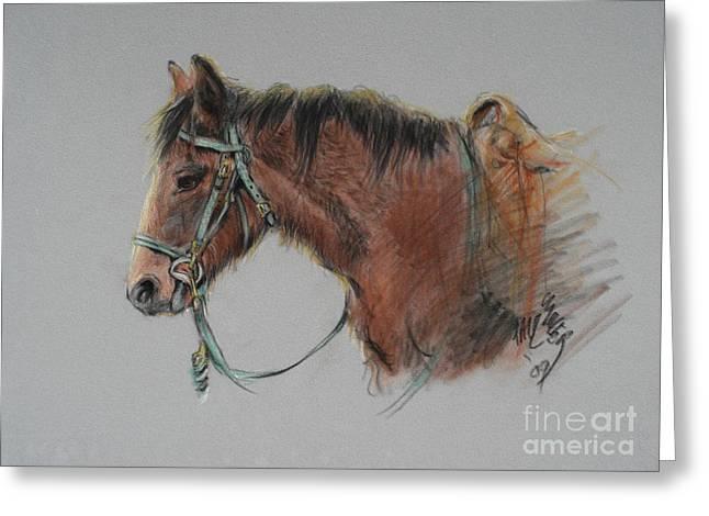 Pat Winter At The Morgan Horse Ranch Prns Greeting Card