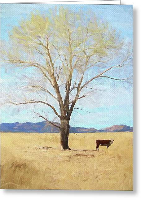 Patagonia Pasture 2 Greeting Card