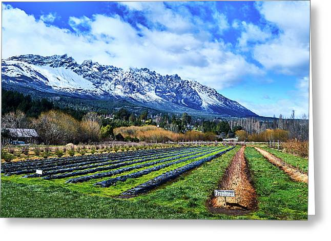 Landscape With Mountains And Farmlands In The Argentine Patagonia Greeting Card