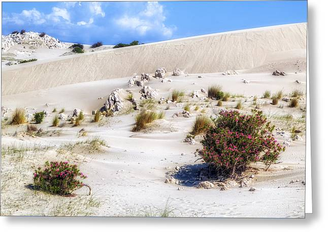 Patara Beach - Turkey Greeting Card