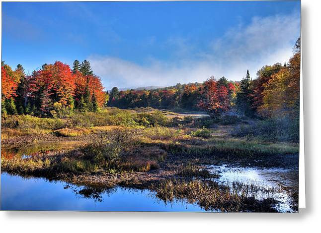 Greeting Card featuring the photograph Patches Of Fog At The Green Bridge by David Patterson