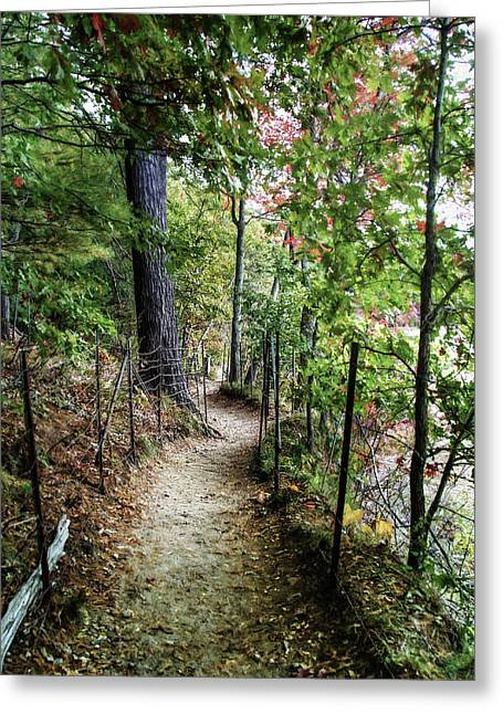 Path Along The Pond Greeting Card