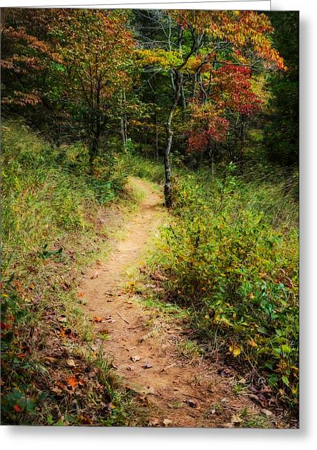 Path In The Prairie Greeting Card by Diana Boyd