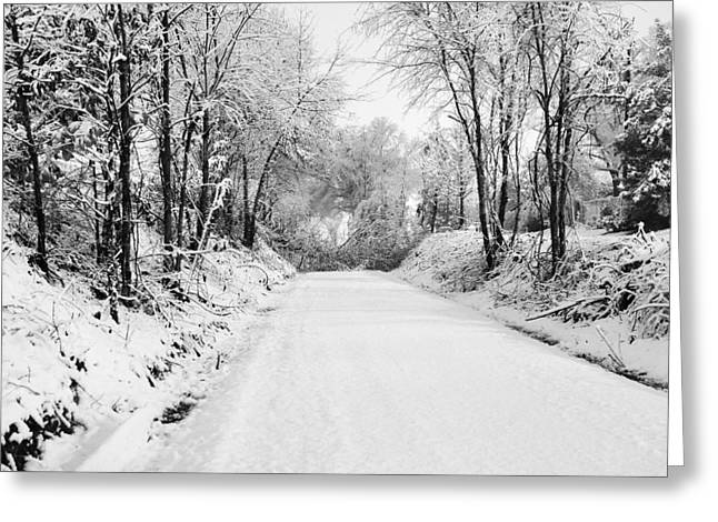 Path In The Snow Greeting Card by Michelle Shockley
