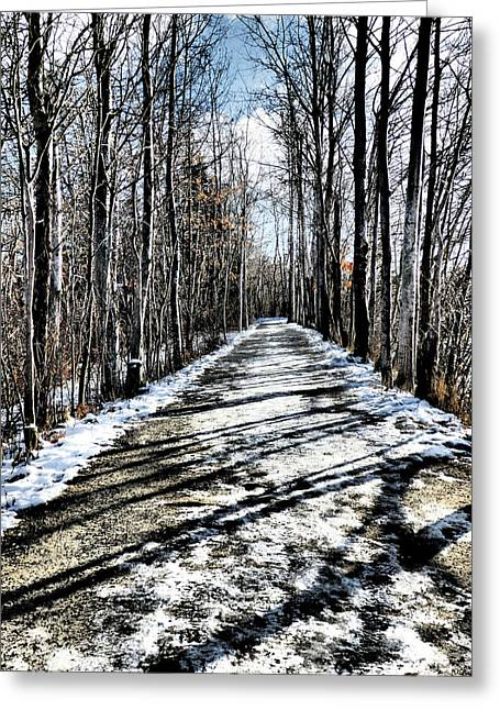 Path In Winter Greeting Card