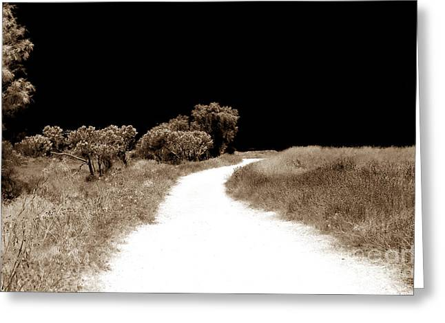 Path Into The Dark Greeting Card by John Rizzuto