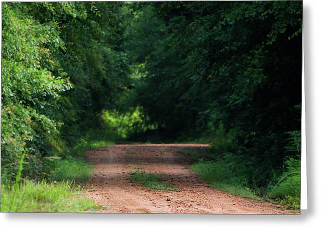 Path Of Light Horizontal Greeting Card by Shelby Young