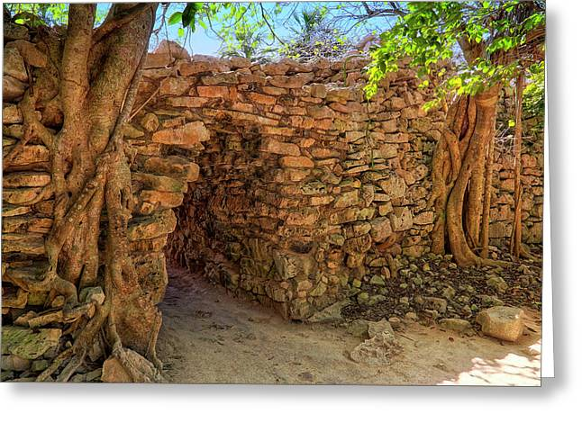 Greeting Card featuring the photograph Path Of The Ancients - Mayan Ruins - Mexico by Jason Politte