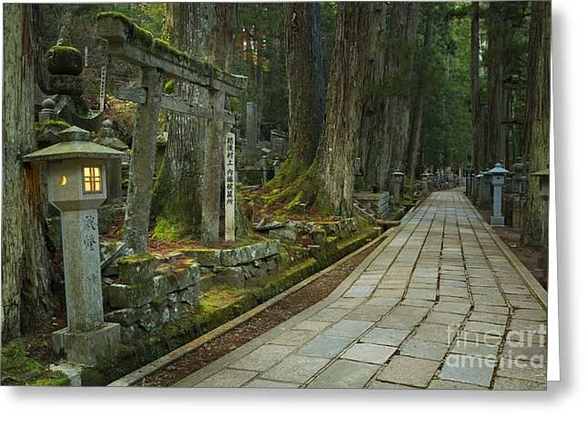 Path Through Koyasan Okunoin Cemetery, Japan Greeting Card