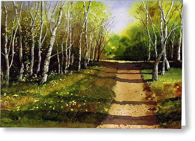Path Through Silver Birches Greeting Card by Paul Dene Marlor