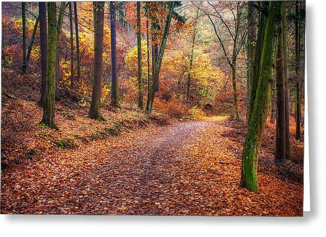 Path Through The Colorful  Autumn Greeting Card by Jenny Rainbow