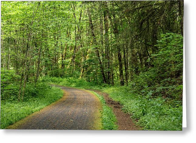 Greeting Card featuring the photograph Path Through The Woods by Jean Noren
