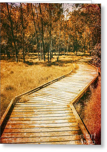 Path To Autumn Marshlands Greeting Card