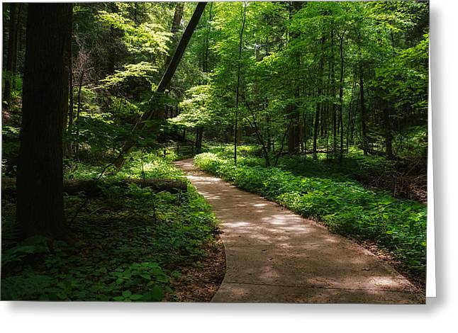 Path To Conkle's Hollow Greeting Card by Rachel Cohen