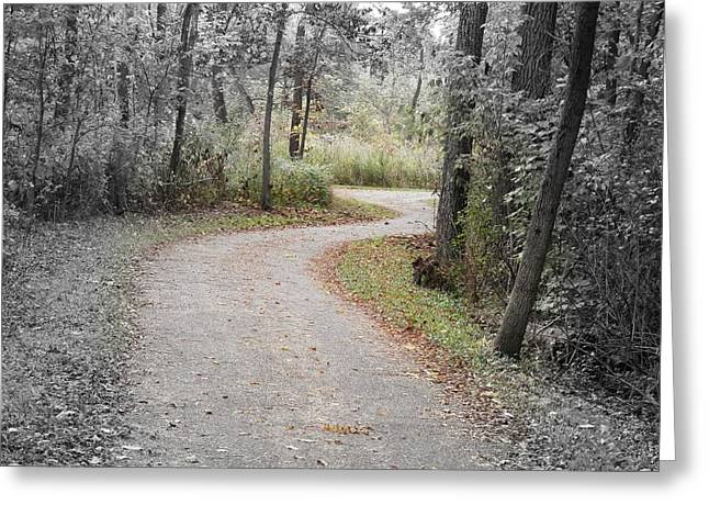 Path To Discovery Greeting Card