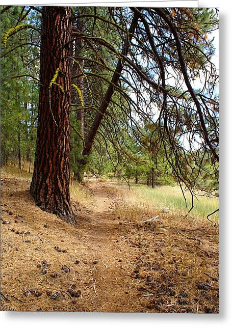 Greeting Card featuring the photograph Path To Enlightenment 2 by Ben Upham III