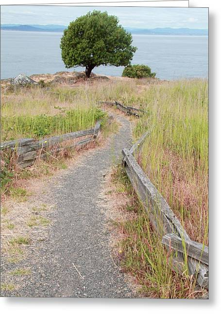 Path To The Beach Greeting Card by Dan Sproul