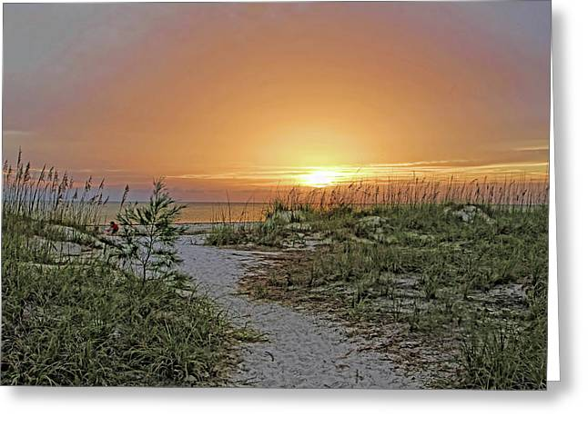 Path To The Beach Greeting Card by HH Photography of Florida