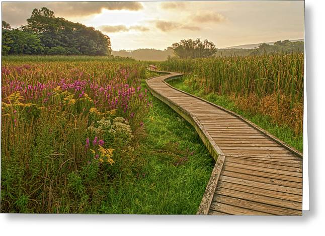 Path To The Light Greeting Card by Angelo Marcialis