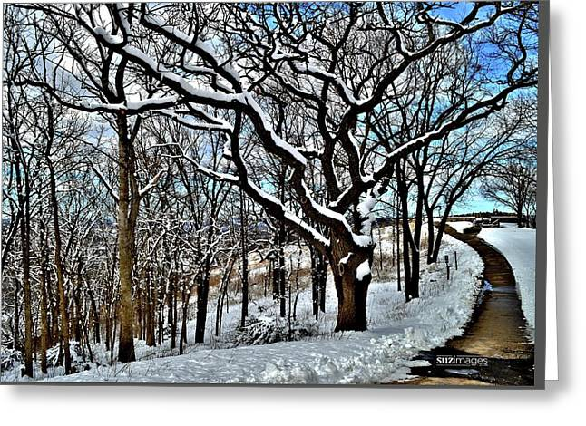 Path To The Lookout Greeting Card