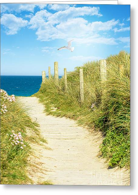 Path To The Ocean Greeting Card by Amanda Elwell