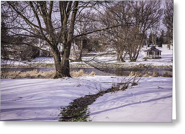 Path To The River Greeting Card by Anne Witmer