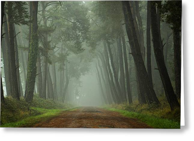 Path To The Unkown II Greeting Card