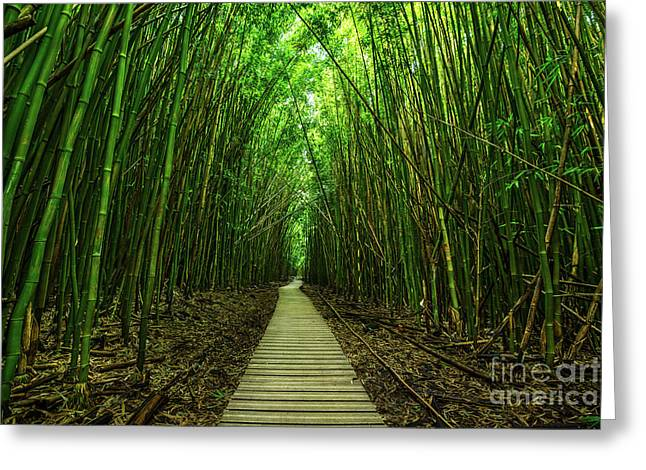 Path To Zen Greeting Card