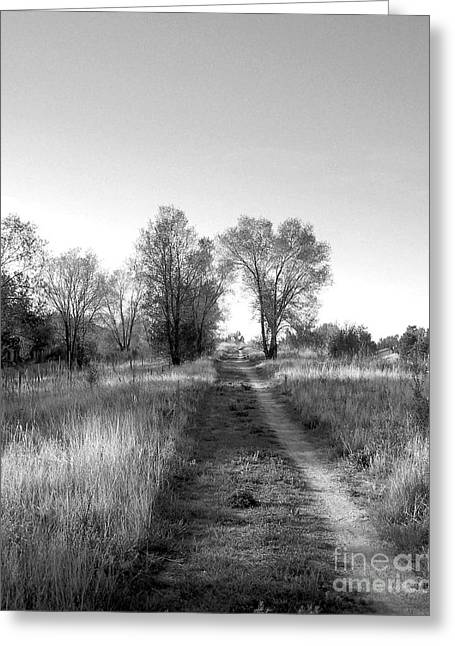 Path Yet Taken Greeting Card
