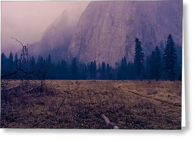 Pathway During First Snow In Yosemite Valley Greeting Card