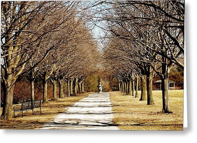 Pathway Through Trees Greeting Card