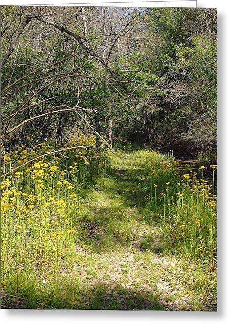 Pathway To Heavan Greeting Card by Alicia Morales